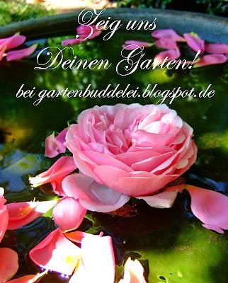 http://gartenbuddelei.blogspot.de/2015/04/zeig-uns-deinen-garten-heute-der-garten_21.html