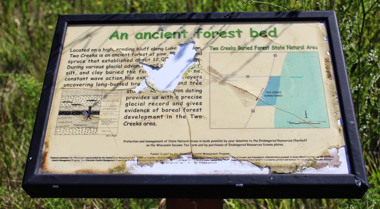 Wisconsin Historical Markers An Ancient Forest Bed - State check off map