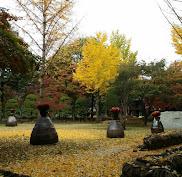 SEOUL - Nov 2015