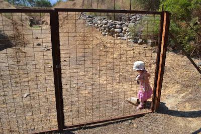 Shambolic fencing
