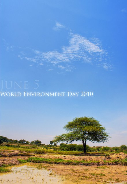 Poster Hari Lingkungan