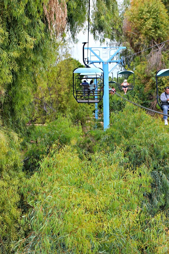Collect Memories, Not Things.  Wildlife World Zoo SkyRide with lowest priced unlimited plans