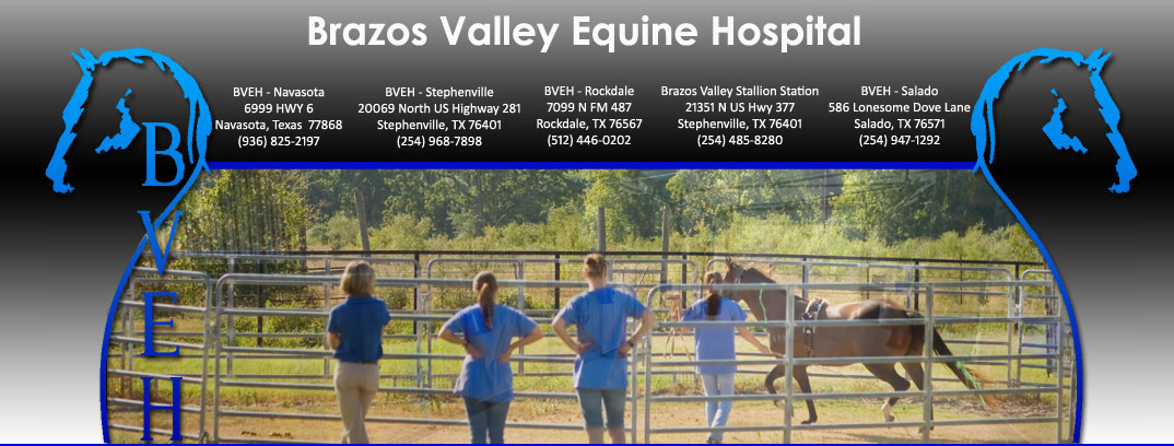 Thank You Brazos Valley Equine Hospital