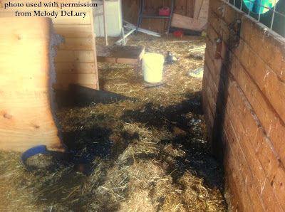 This barn fire was caused by heat lamp.