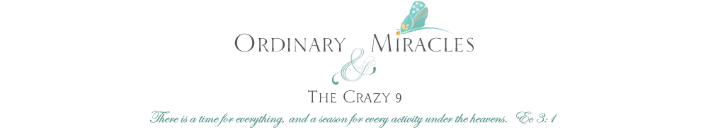 Ordinary Miracles & The Crazy 9