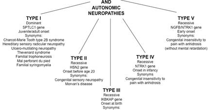 Rare Genetic Disorder: Types