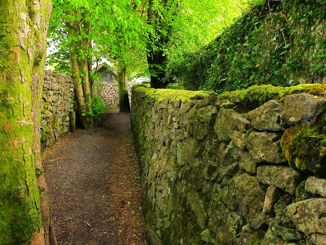 The Waterfall Walk  in Oughterard, Galway, Ireland
