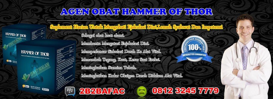 jual obat hammer of thor malang agen hammer of thor toko hammer of