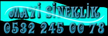 Mavi Sineklik, Sineklik ,Kedi Sinekliği , 0532 245 00 78 , 0542 220 40 32