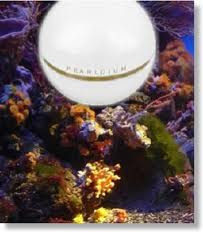 Discover The Ancient Secret of Pearl