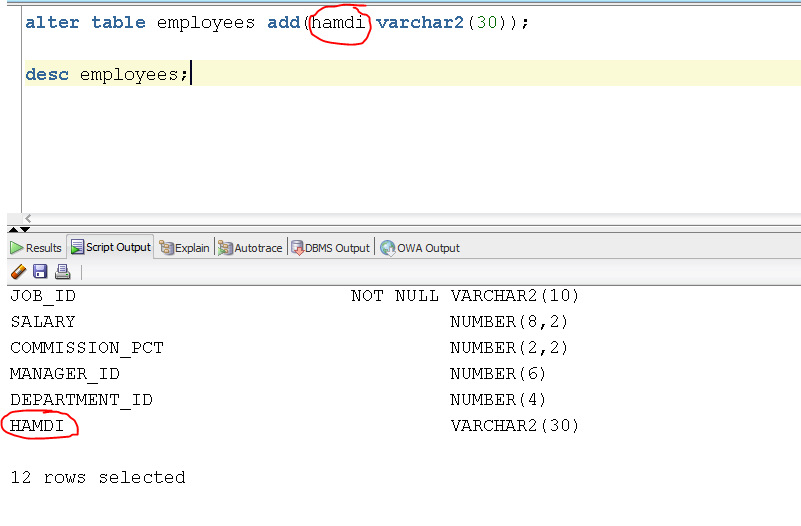 Computer scientist some sql queries 2 insert alter - Alter table add column not null ...