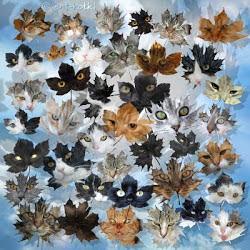 kocie liście od Amyszki