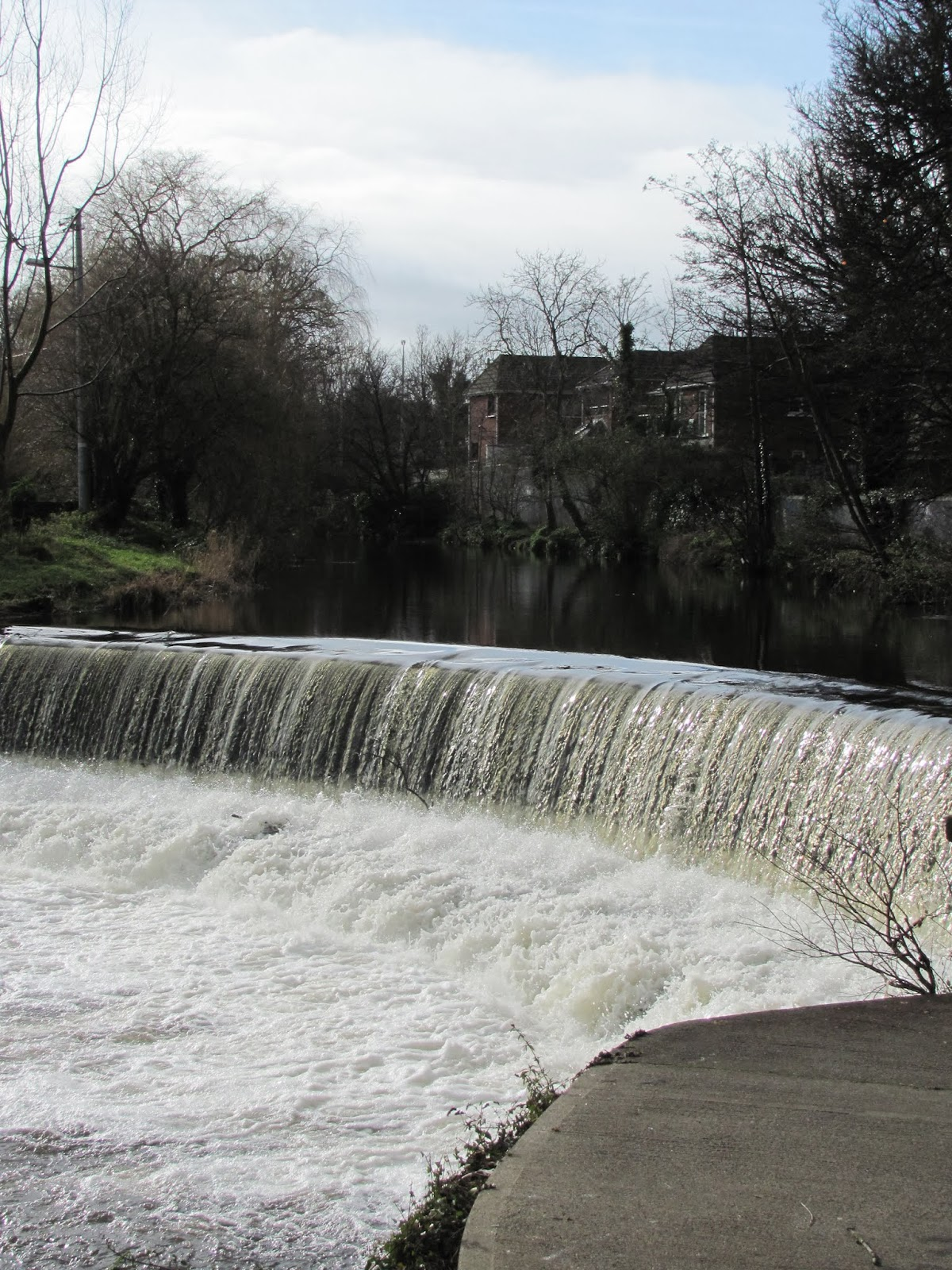 Another of many Dodder weirs in Dublin