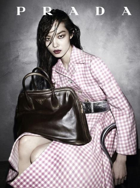 Fei Fei Sun in Prada Fall 2013 Campaign by Steven Meisel