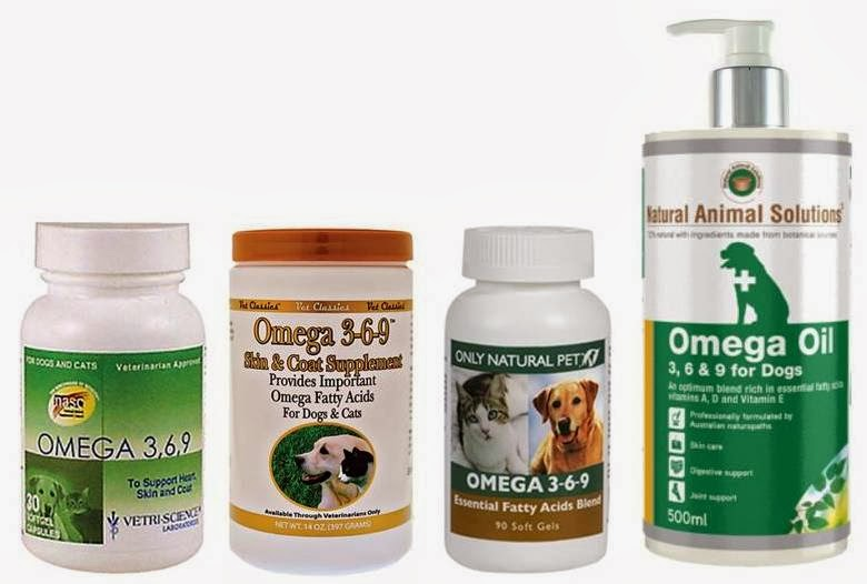 Best Omega  Fatty Acid For Dogs