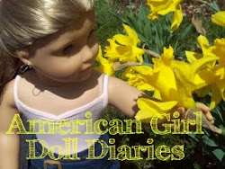 American Girl Doll Diaries
