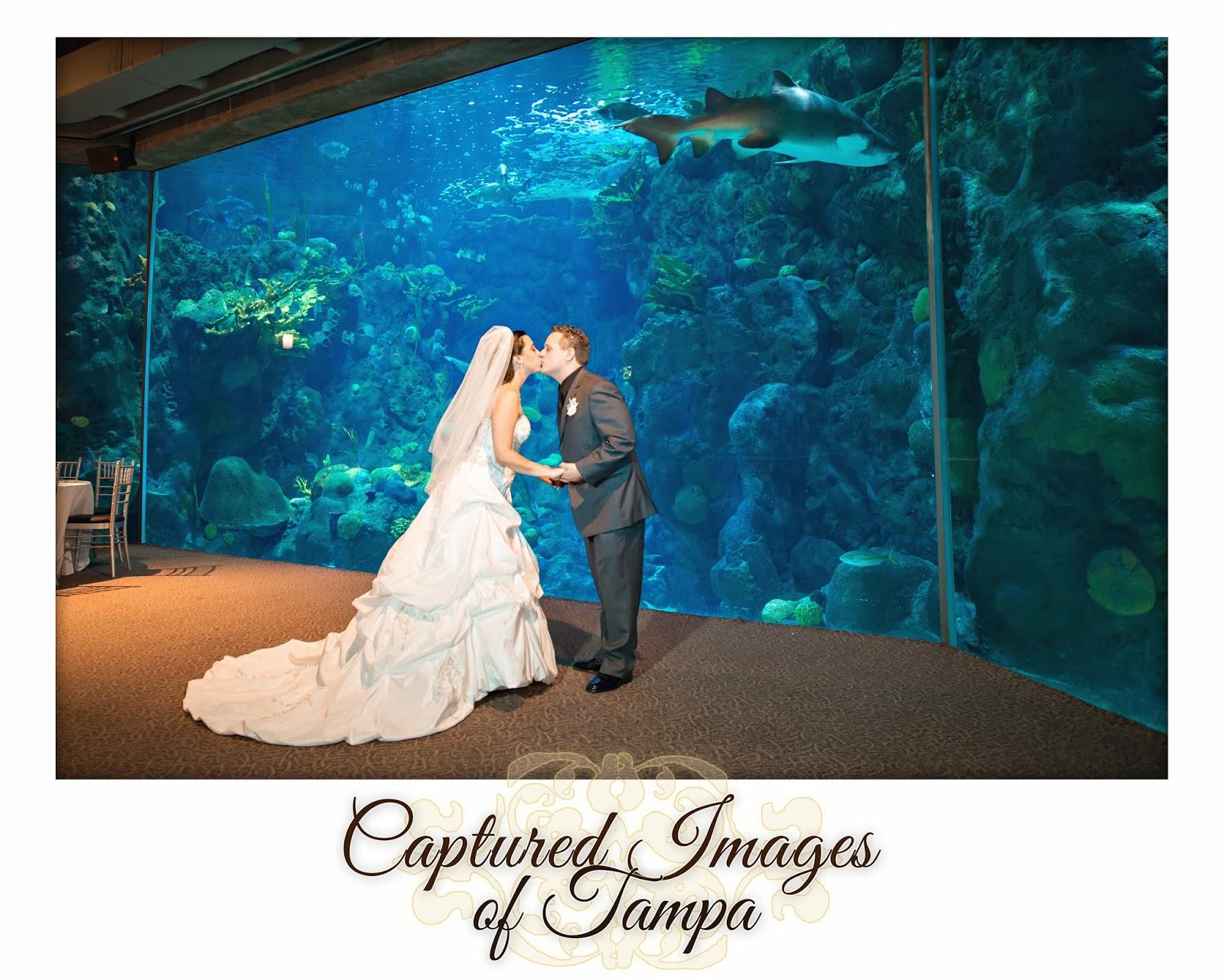 Captured Images Blog Katrina Cary Tampa