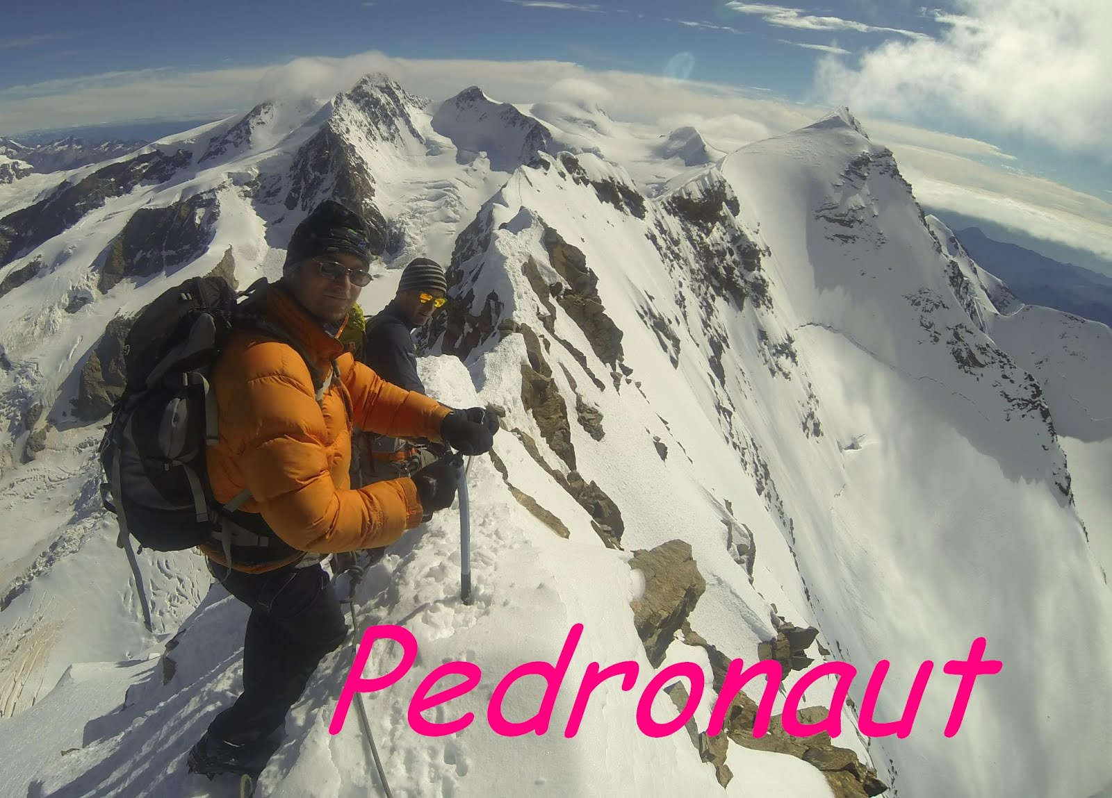 Pedronaut