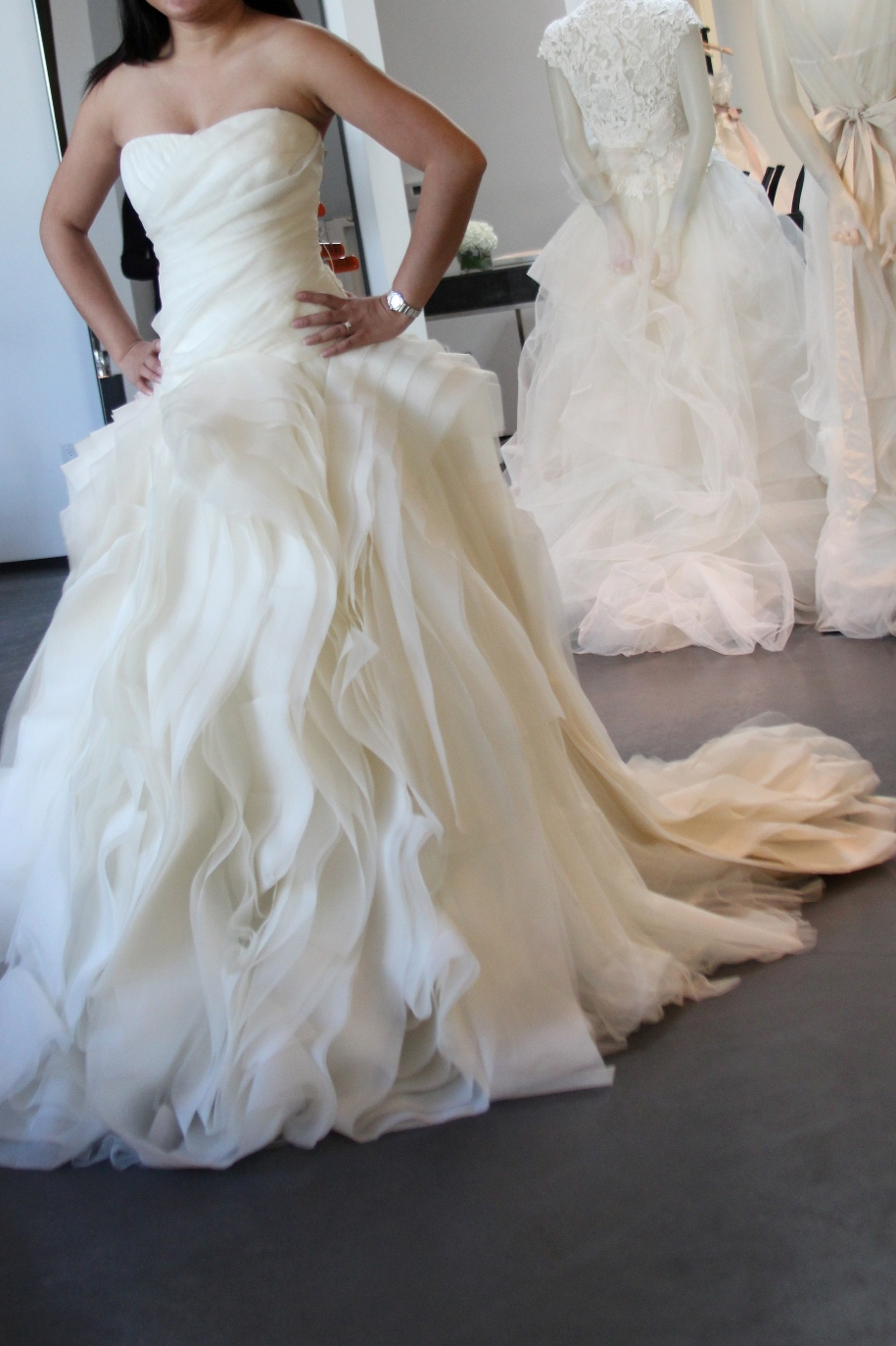 Under the california sun wedding dresses vera wang for Price of vera wang wedding dress