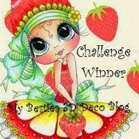 Winnaar #4 Mybesties3Ddecoblog