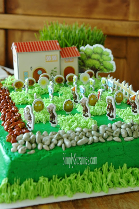A Plants Vs Zombies Birthday Celebration