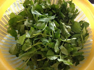 watercress vegetable cure for cough
