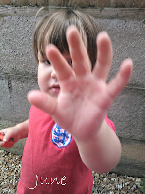 No photos toddler boy