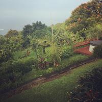 Carrie's Hawaii trip - amazing views
