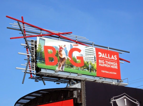 Dallas Big things happen here dog frisbee billboard