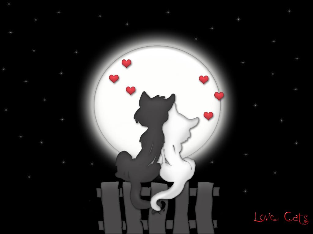 ... gambar gambar cinta lainnya yang lebih lucu, keren, cantik dan