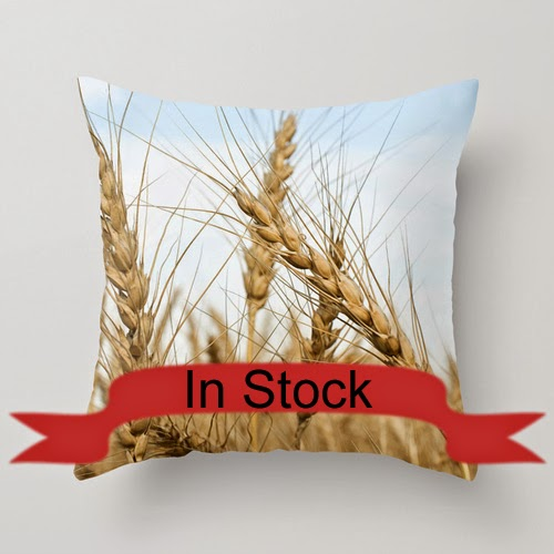 https://www.etsy.com/listing/197297710/14x14-wheat-field-throw-pillow-cover