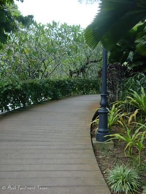 Singapore Botanic Gardens Photo 3