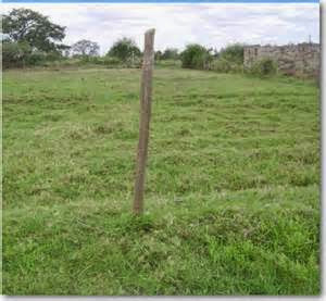 Plots for Sale in Chalala