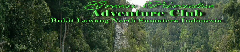 Green Paradise Bukit Lawang ITour & Travel I Best Offer