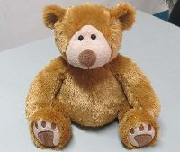 The Arc4life ChiroBear- the chiropractic teddy bear