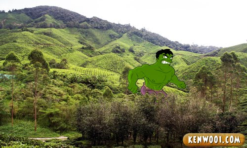 cameron highlands the hulk