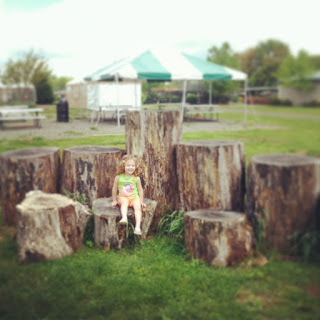 photoblog, project 52, family photographer, mother, motherhood, superheros, cupcakes, Virginia photographer, blog hop, morven park, leesburg, leesburg animal park, self portrait,