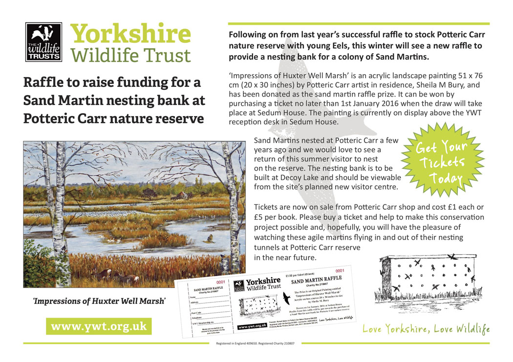 Raffle poster for Sand Martin Bank