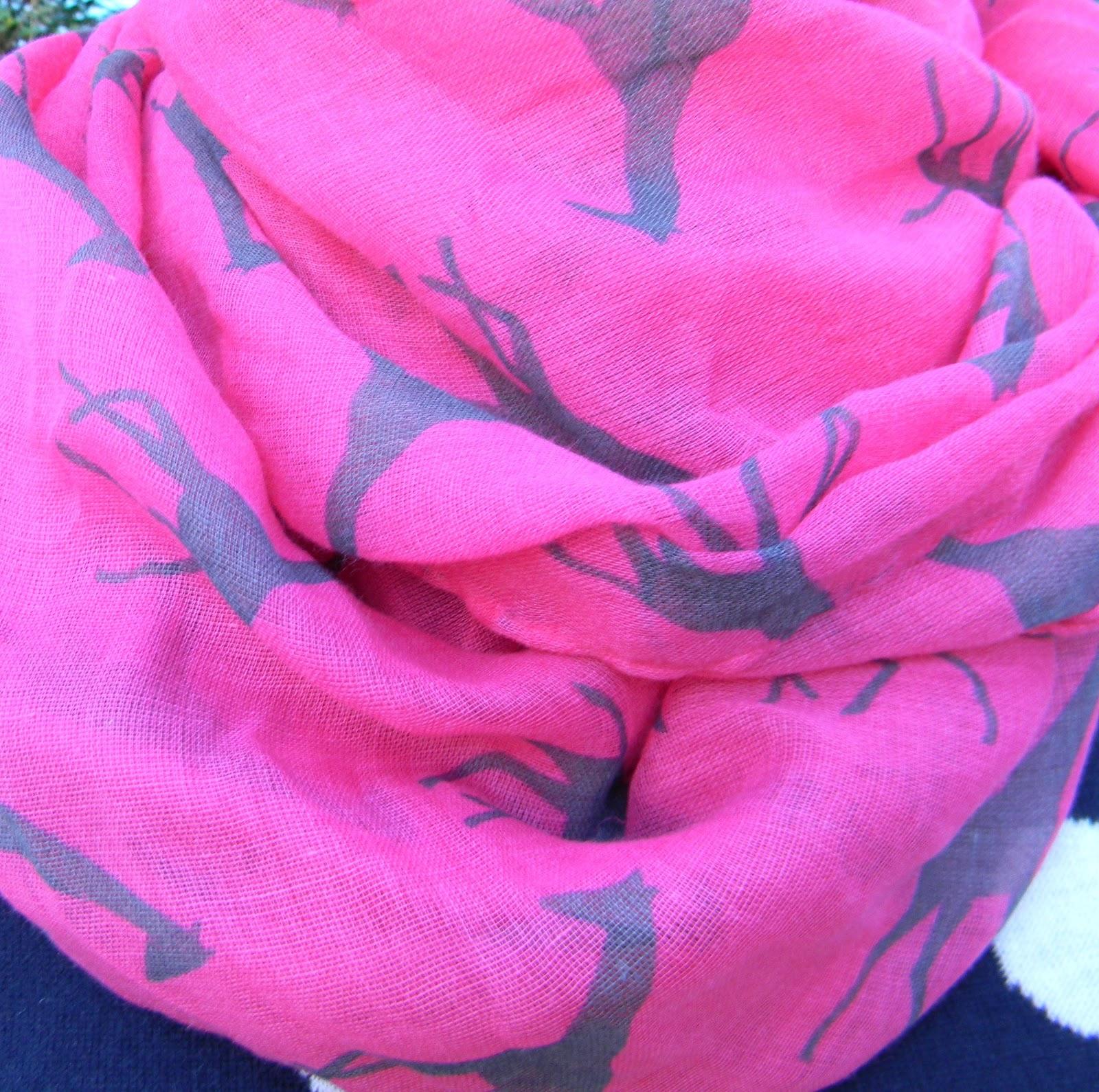http://4.bp.blogspot.com/-dEjsLBq4Nb8/T0g4jROLYCI/AAAAAAAABqM/O5Wzj5kHCVM/s1600/2.24.12+Hot+Pink+Giraffe+Scarf+Close+Up.jpg