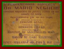 MÁRIO NEGÓCIO