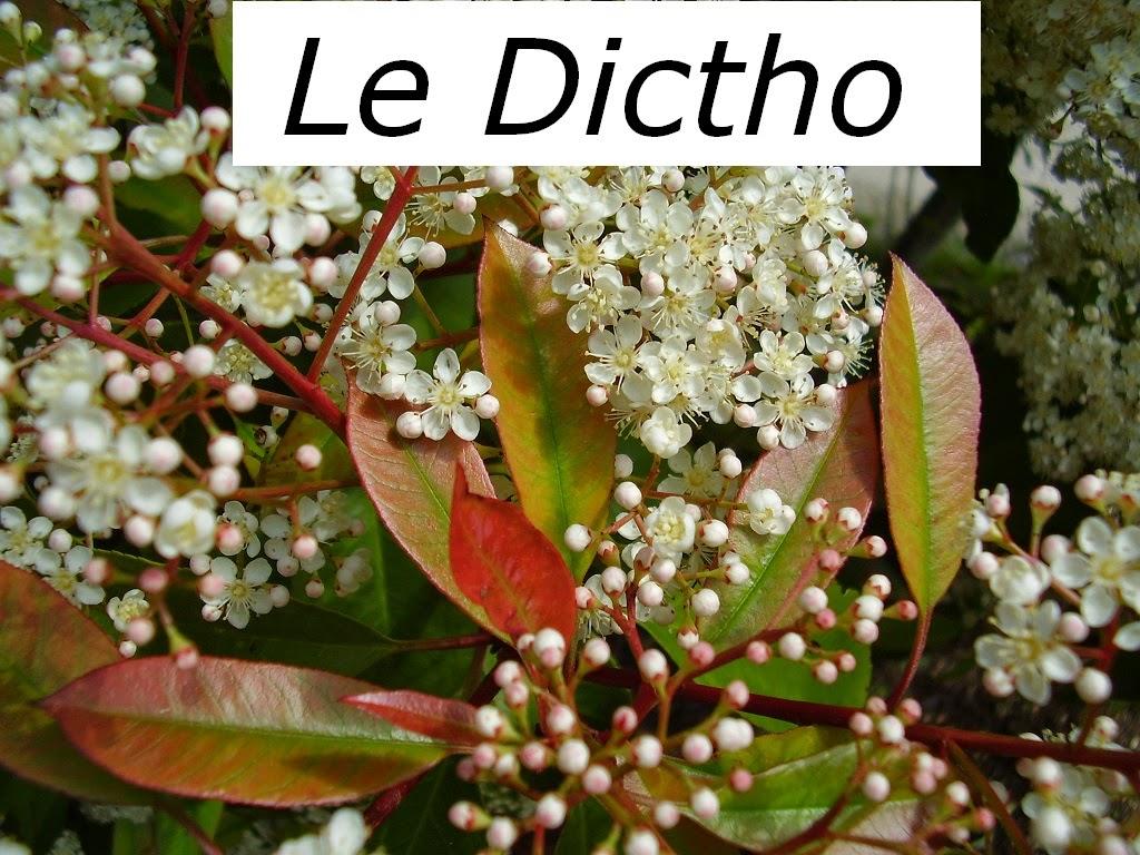 Le Dictho vous permet de trouver facilement les mots.