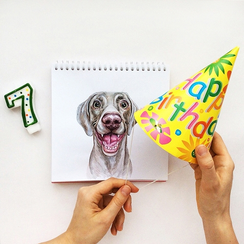 08-Happy Birthday-Valerie-Susik-Валерия-Суслопарова-Cats-and-Dogs-Interactive-Animal-Drawings-www-designstack-co