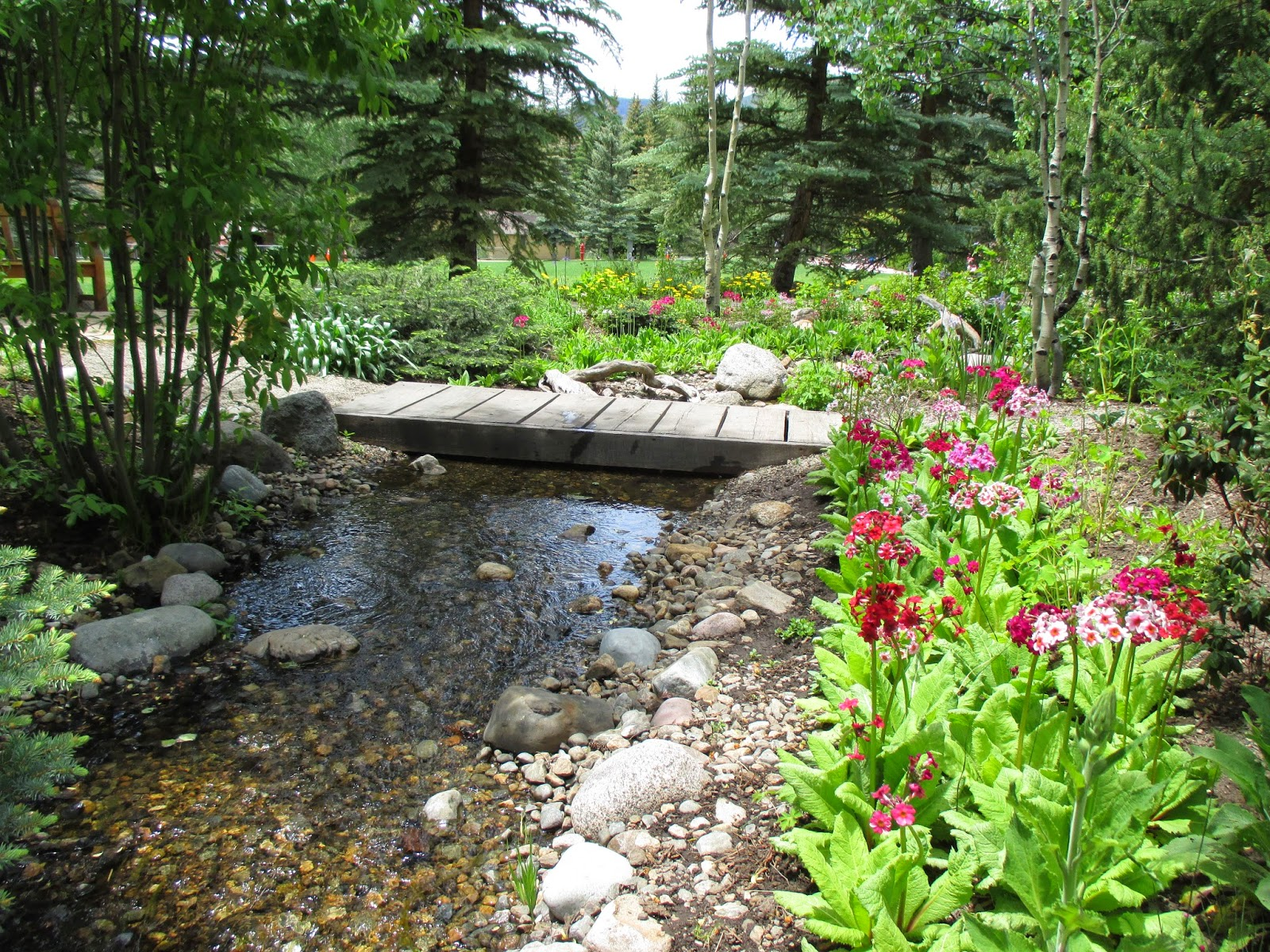 rotary botanical gardens hort blog betty ford alpine garden trip. Cars Review. Best American Auto & Cars Review