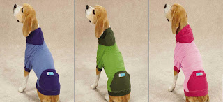 Guardian Gear® Insect Shield Dog Gear