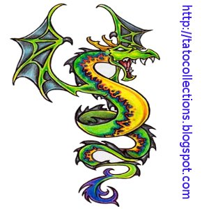 Animals Snake Dragon green