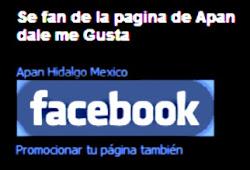 Apan en FaceBook