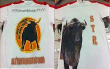 camisola oficial solytoirosdoribatejo