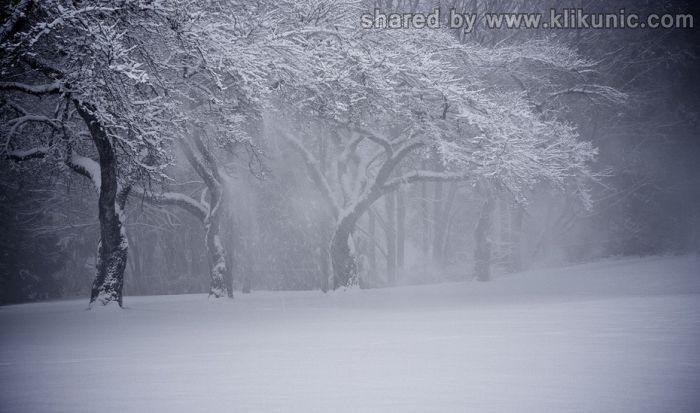 http://4.bp.blogspot.com/-dFxFsQ6WxcY/TXNbsBNiAfI/AAAAAAAAP-k/h7Yen9DCjEw/s1600/winter_19.jpg