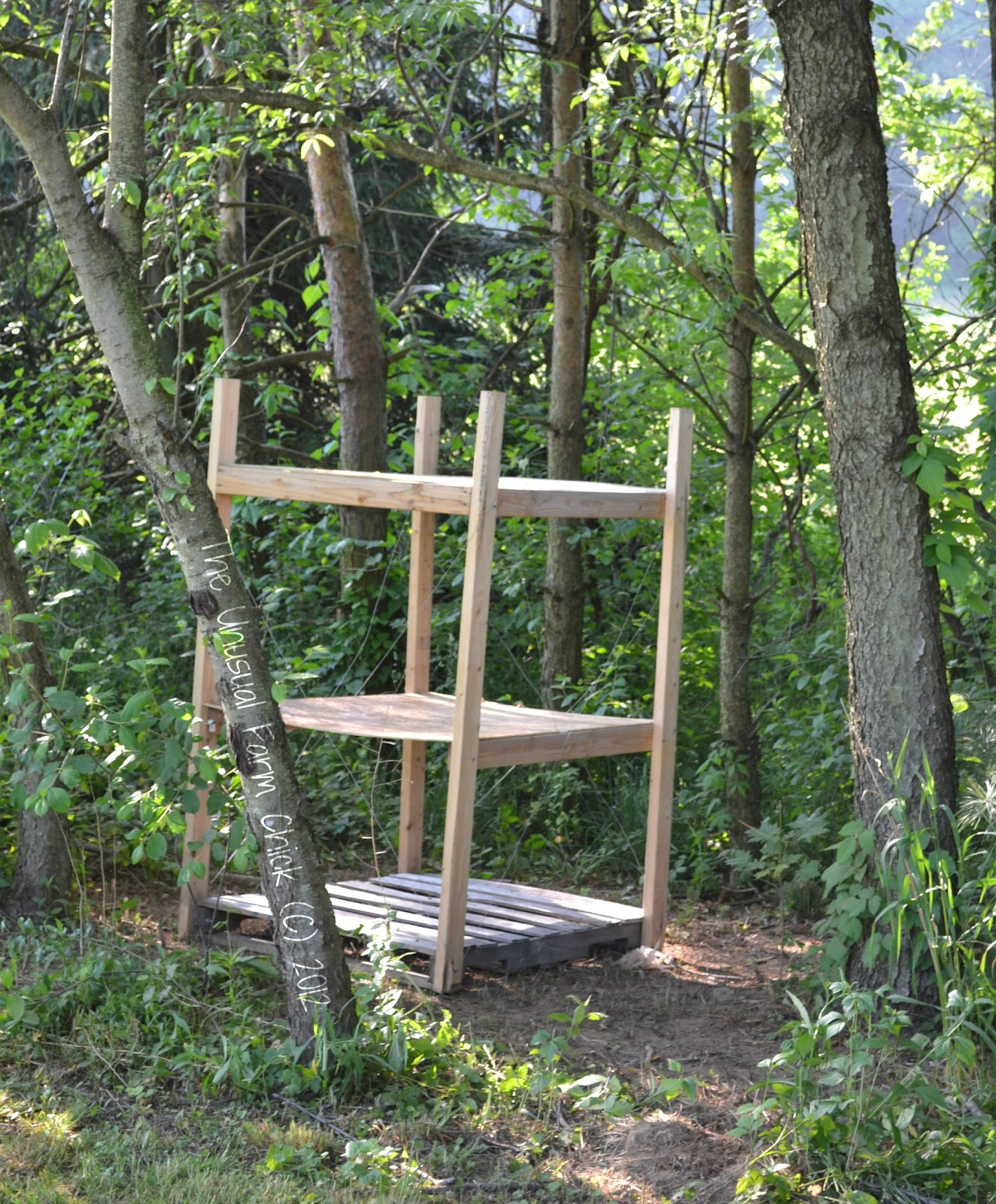 Queen of the pallets strikes again pallet furniture for Pallet tree fort