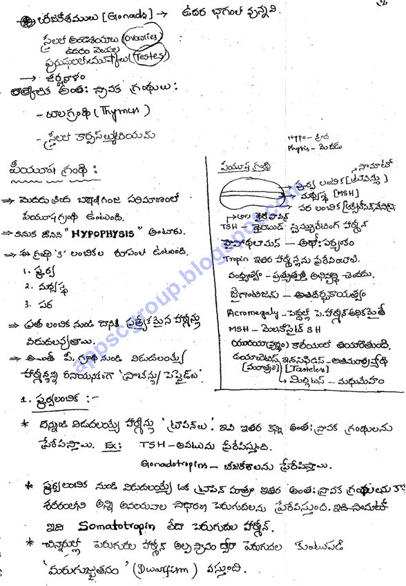 Biology Class Notes for UPSC in Telugu Medium, Biology Telugu Medium Material, APPSC General Studies Material Download, Online APPSC Group 1 and Group 2 Telugu Medium study  Material for Government Jobs in Andhra Pradesh and Telangana.